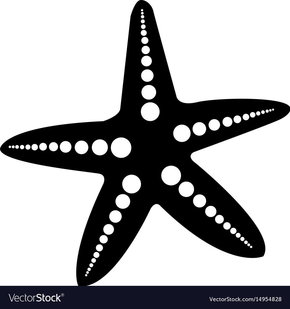 Starfish animal isolated icon vector image