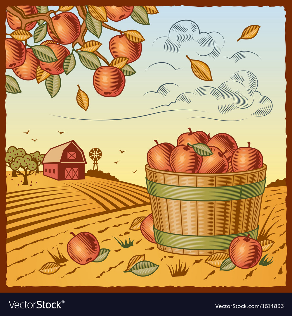 Landscape with apple harvest