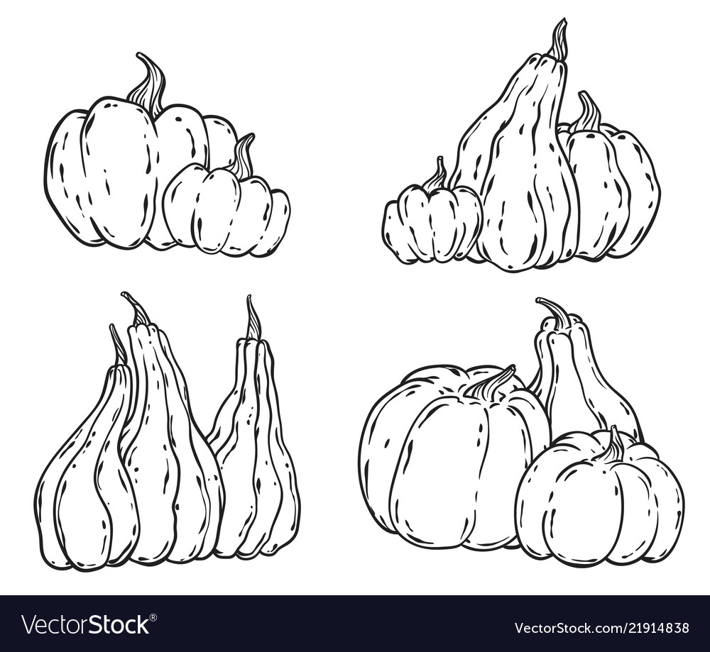 Hand drawn pumpkins set