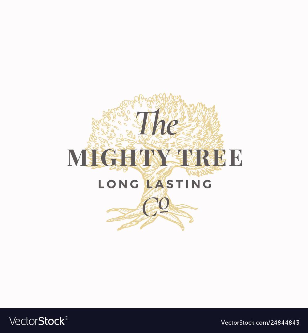 Mighty tree long lasting company abstract