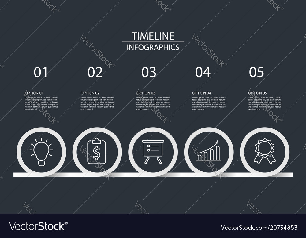 5 steps timeline infographics circle style