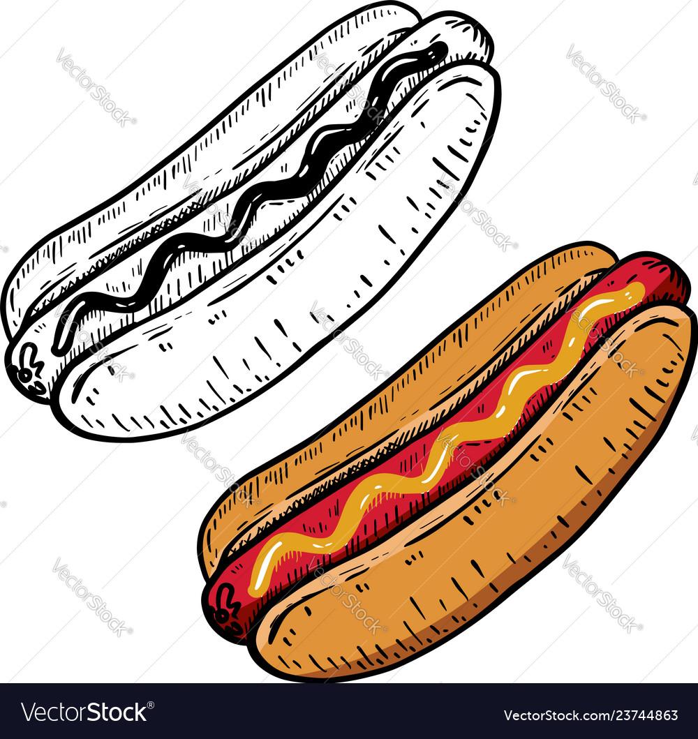 Hand drawn hot dog design element for menu