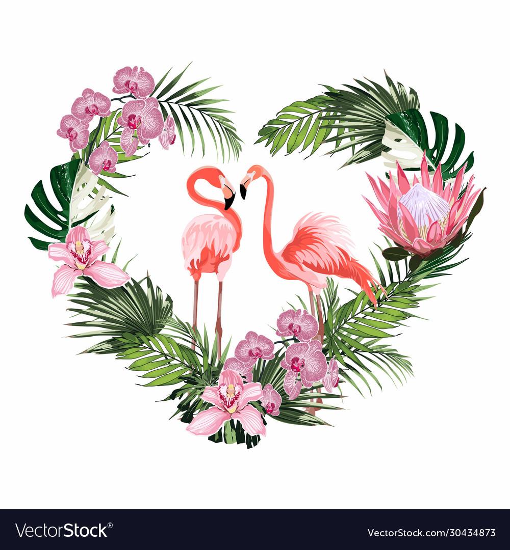 Exotic pink flamingo birds couple heart