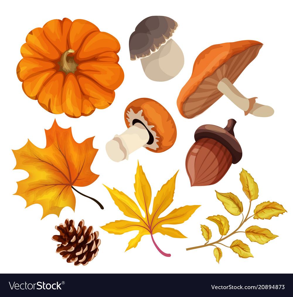 Sketch autumn forest symbol set vector image