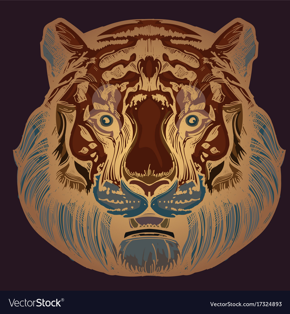 Muzzle of a tiger for creating sketches of vector image