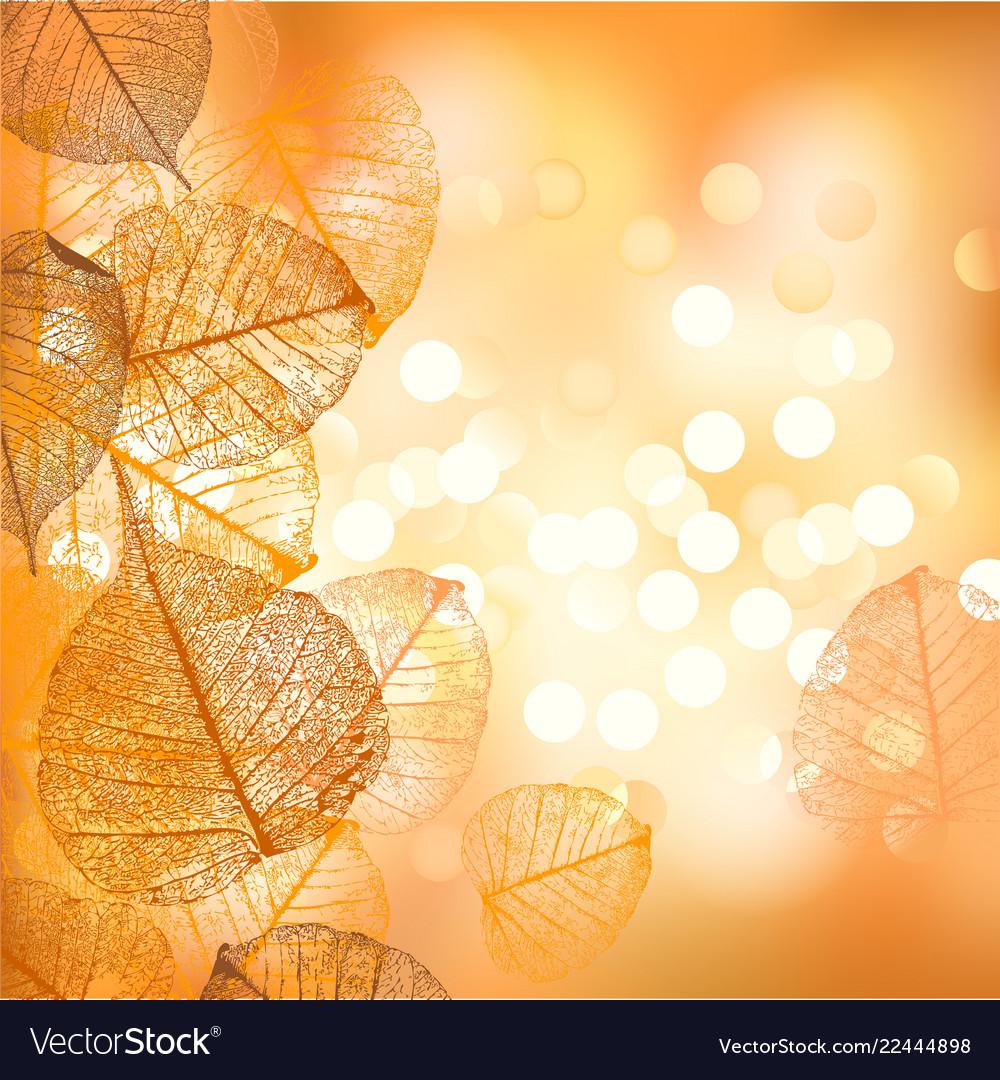 Festive background autumn leaves