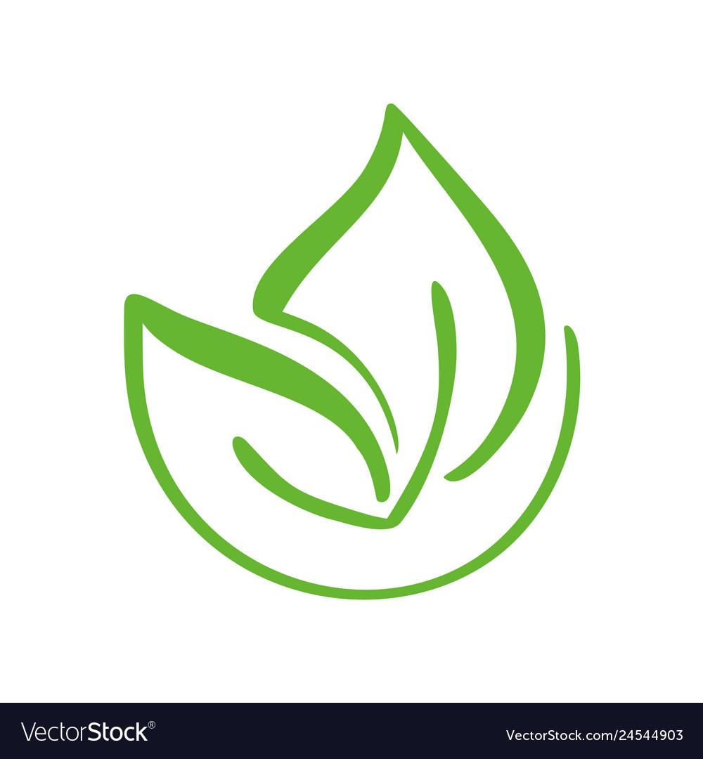 Logo of green leaf of tea ecology nature element