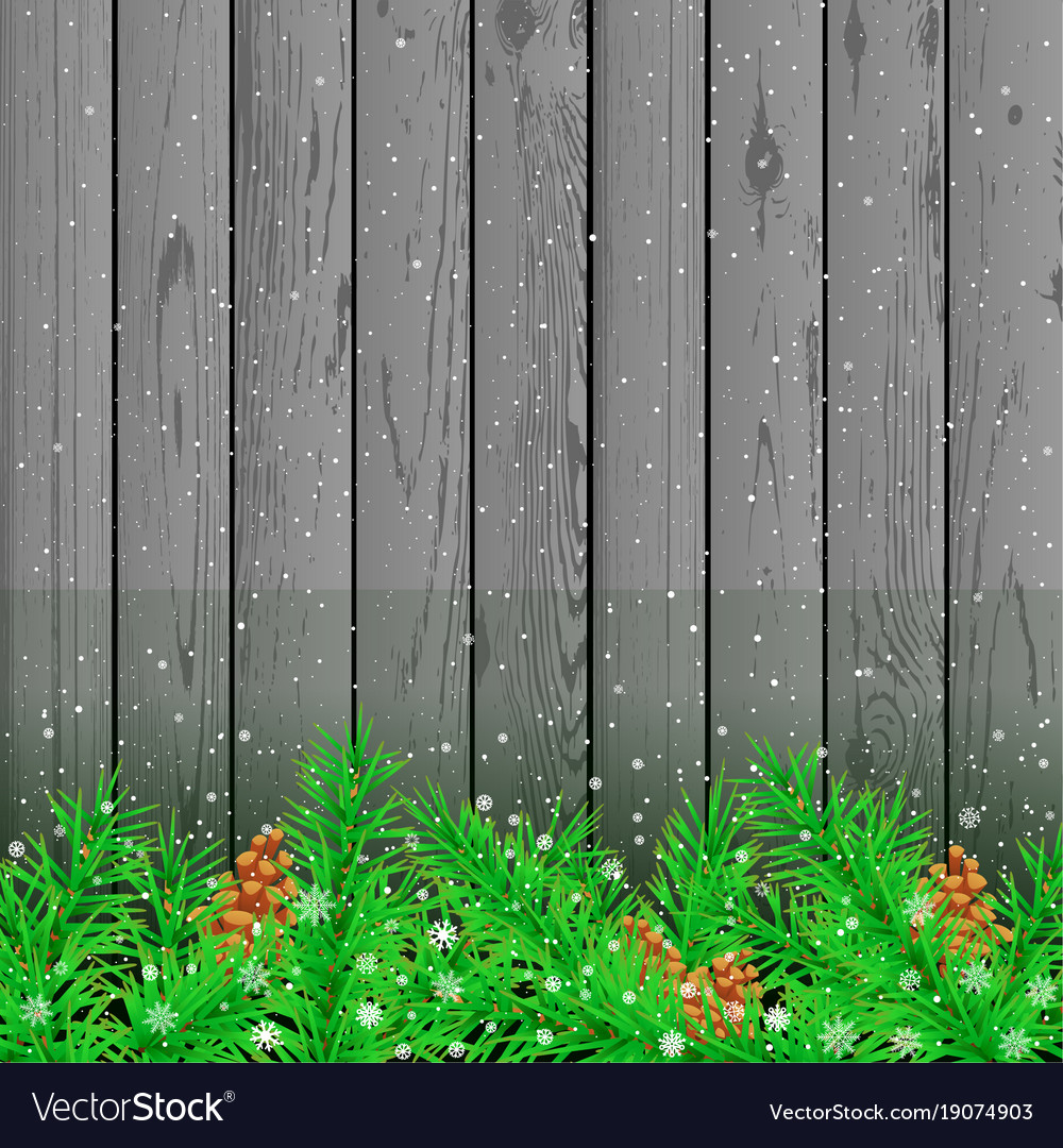 Spruce snow gray wood background