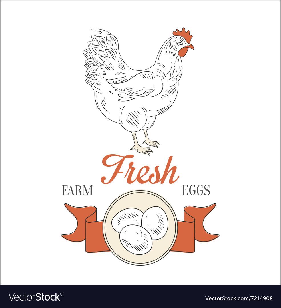 Farm Fresh Eggs Royalty Free Vector Image Vectorstock
