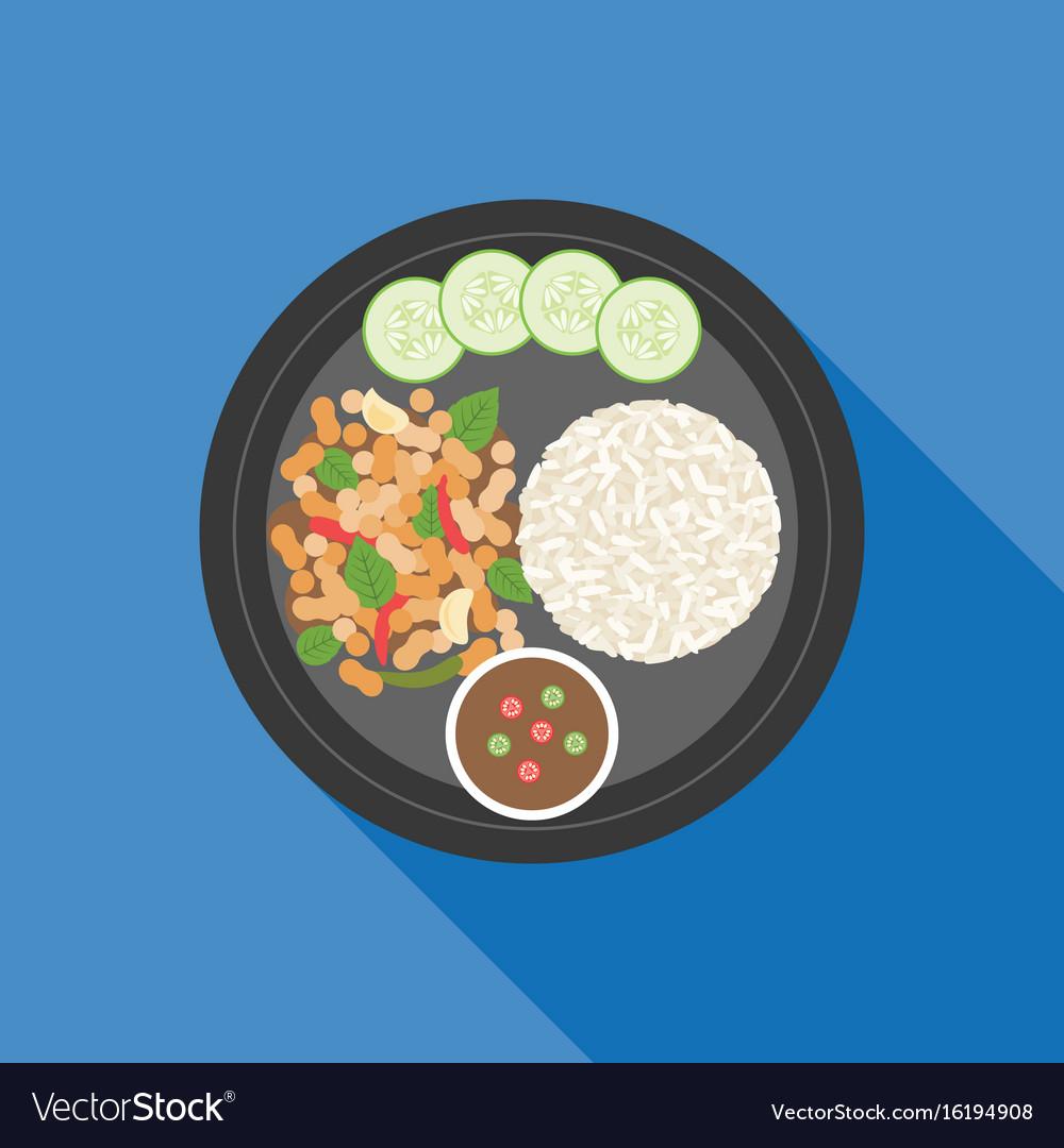 Thai food pad ka prao basil chicken stir fry vector image forumfinder Image collections