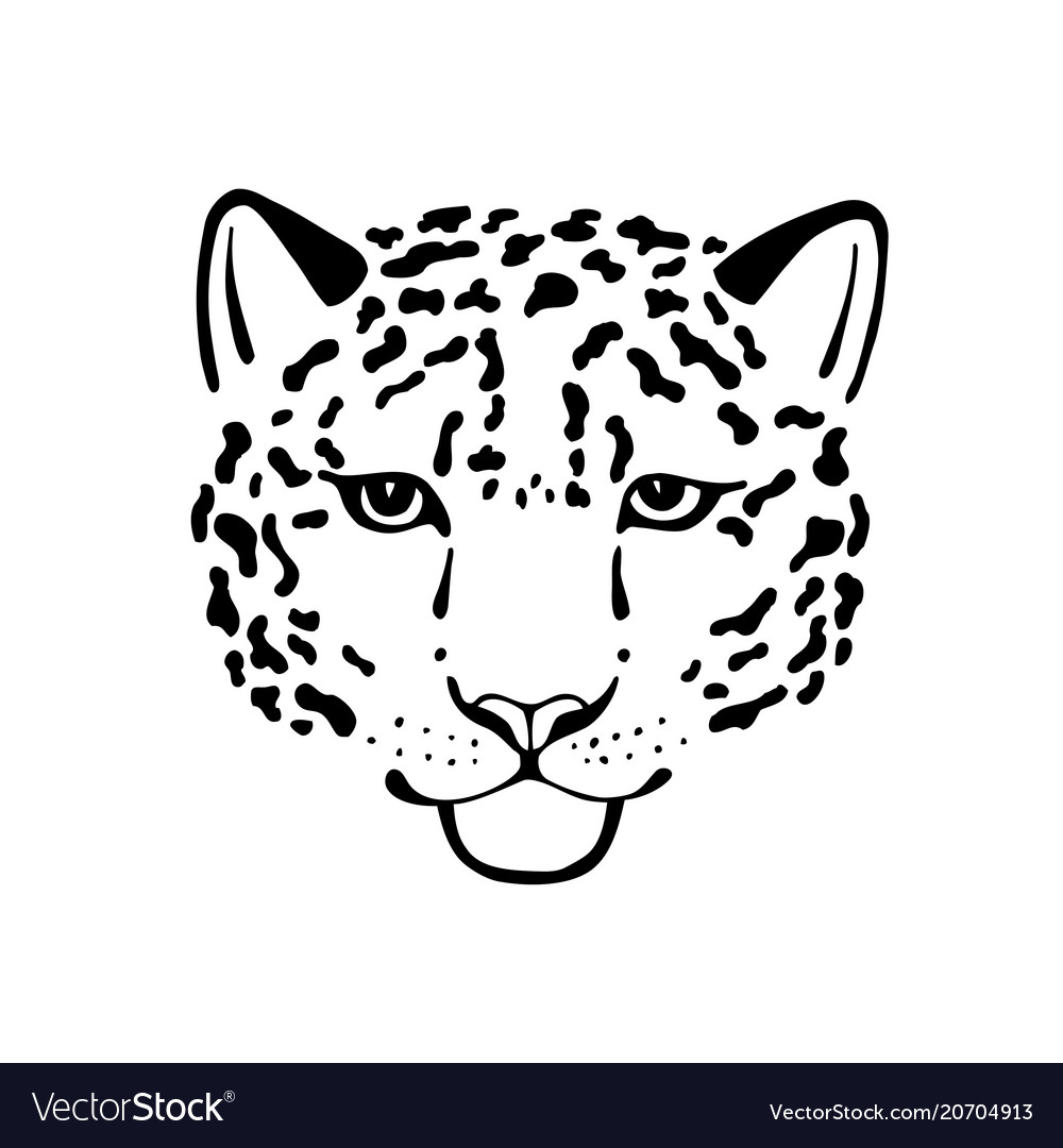 Black And White Sketch Head Of Leopard Royalty Free Vector