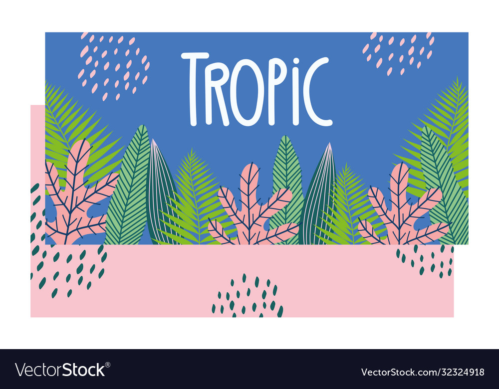 Tropical pattern with leaves and plants on color