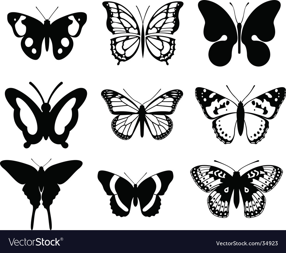 butterfly royalty free vector image vectorstock rh vectorstock com vector butterfly background vector butterfly design