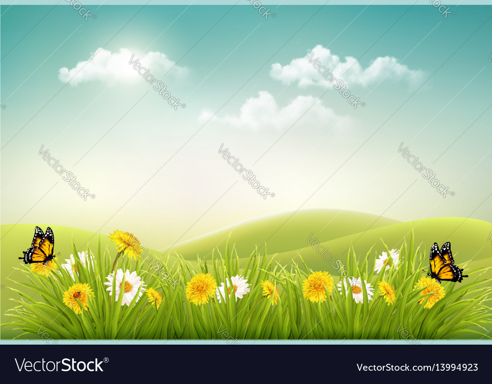 Spring nature landscape background with flowers