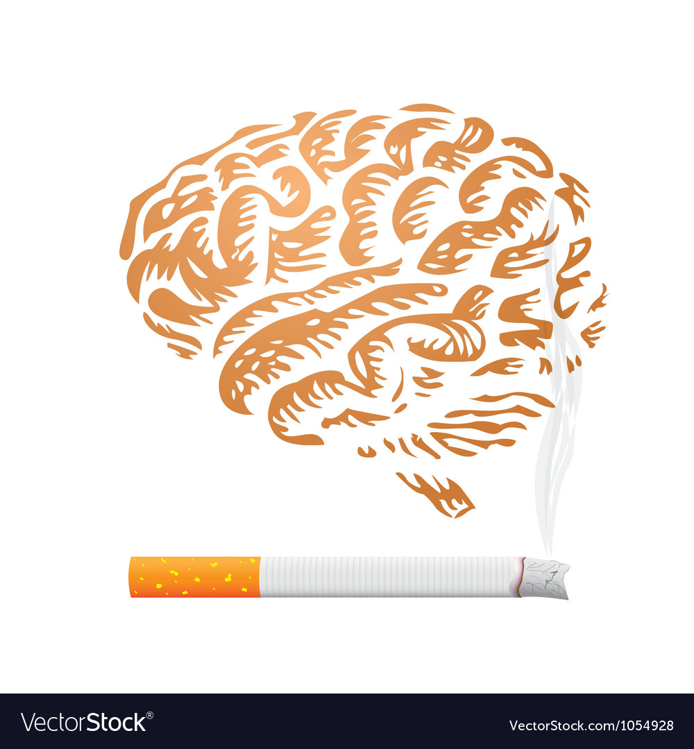 Brain speech bubbles vector image
