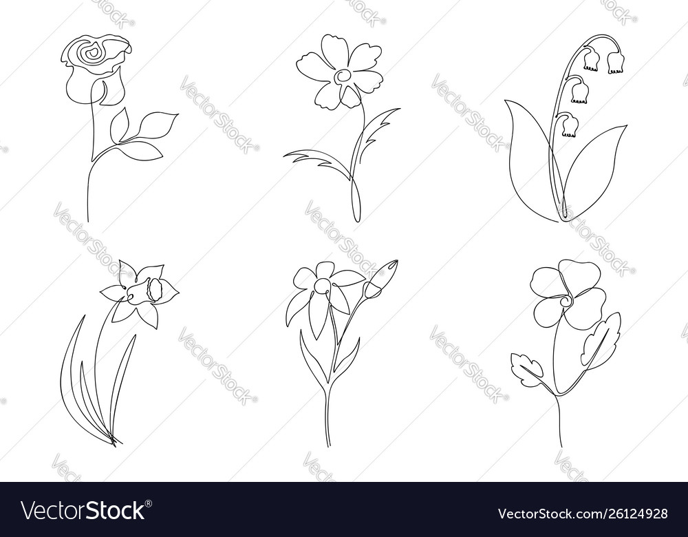 Continuous line flower set one line drawing of