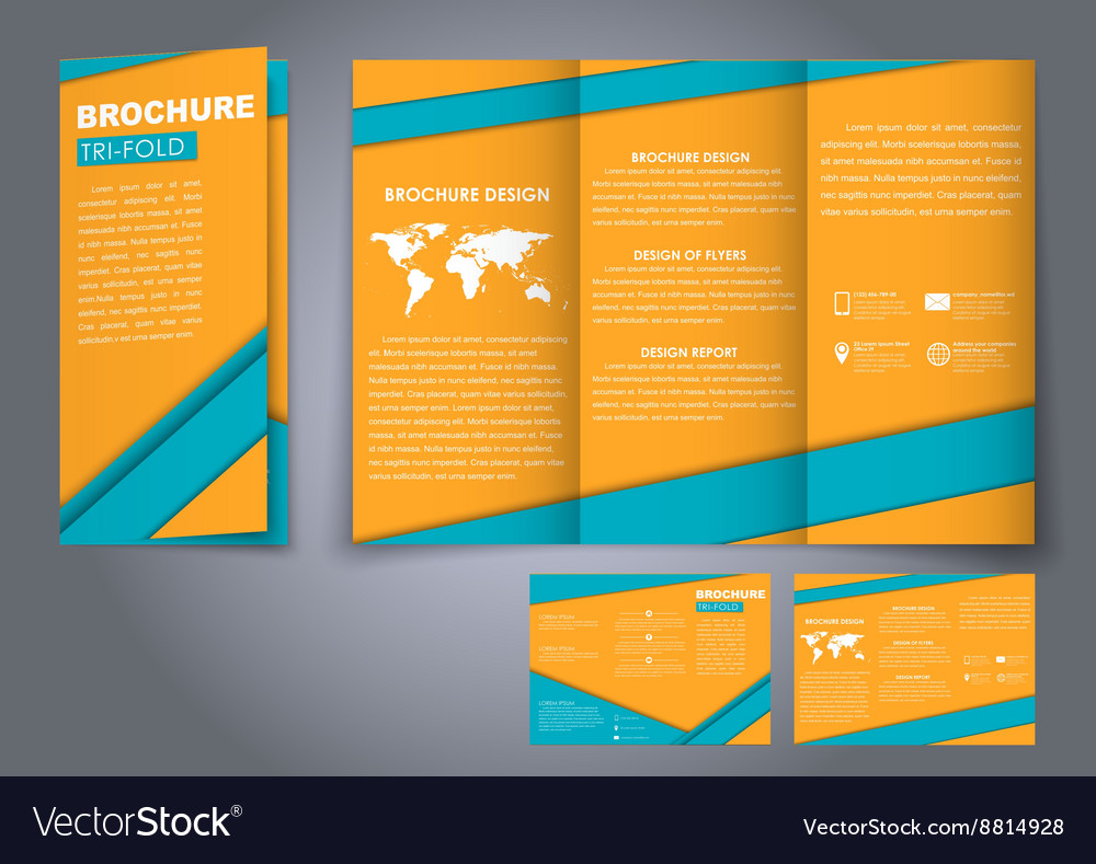 template triple folding brochures royalty free vector image
