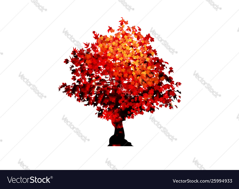 Red maple tree icon isolated on white