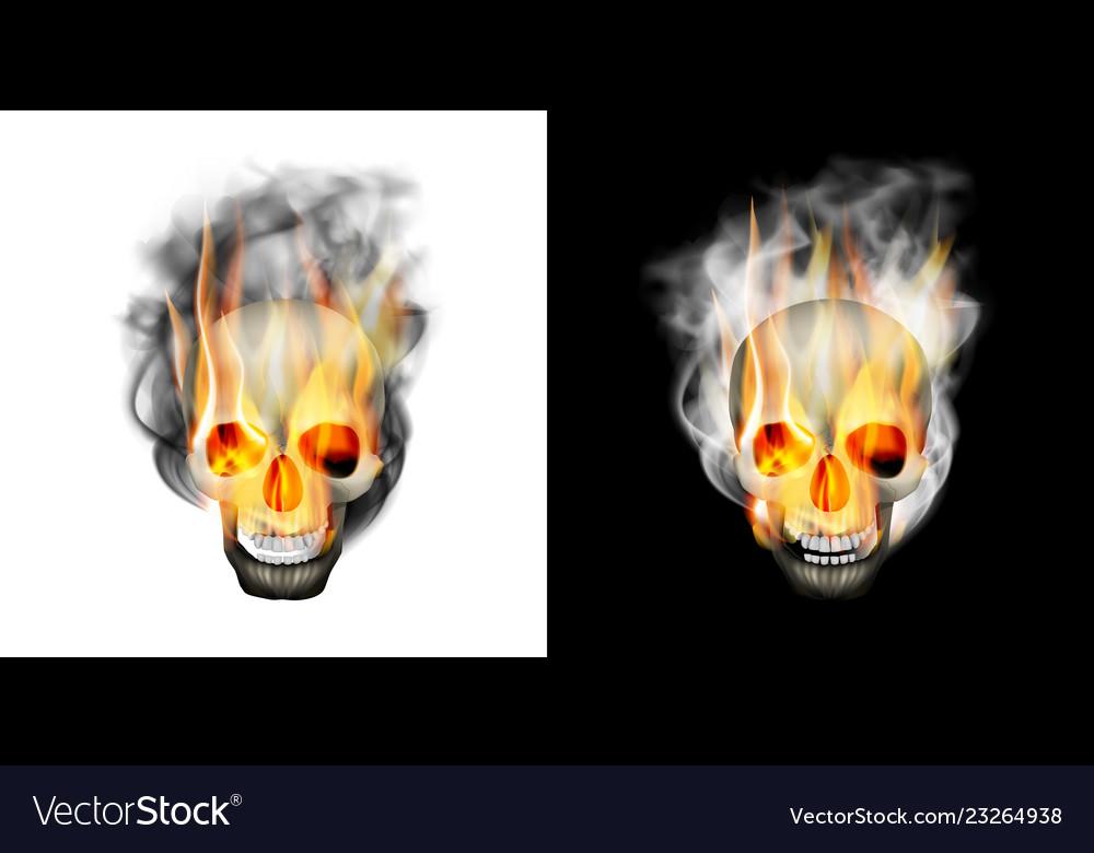 Human skull in the smoke fire