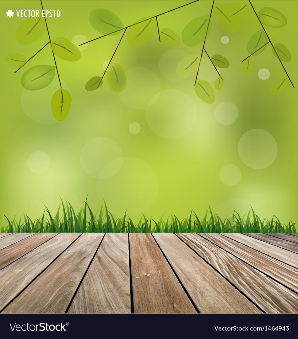 Natural background Fresh spring green grass vector image