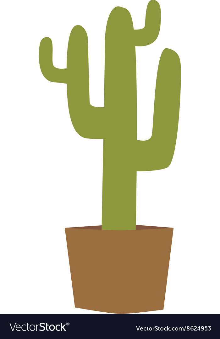 Cactus isolated vector image