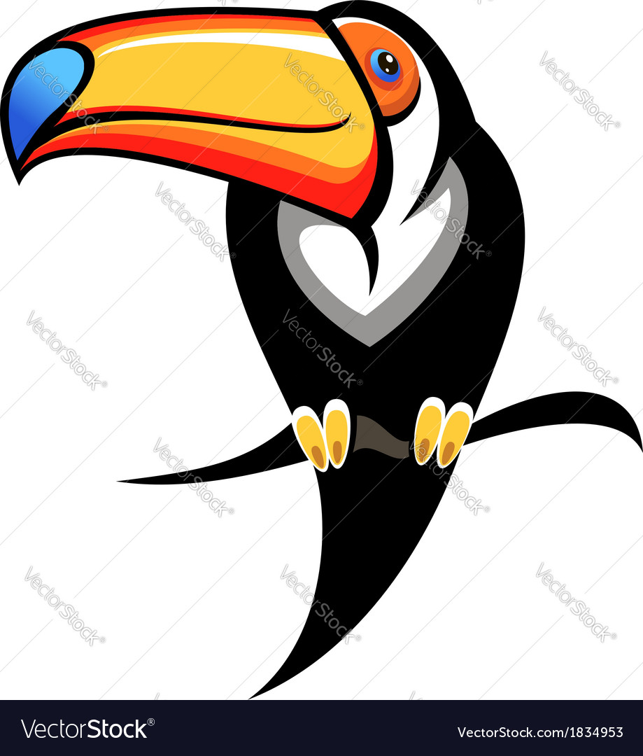 Colourful toucan on a branch vector image
