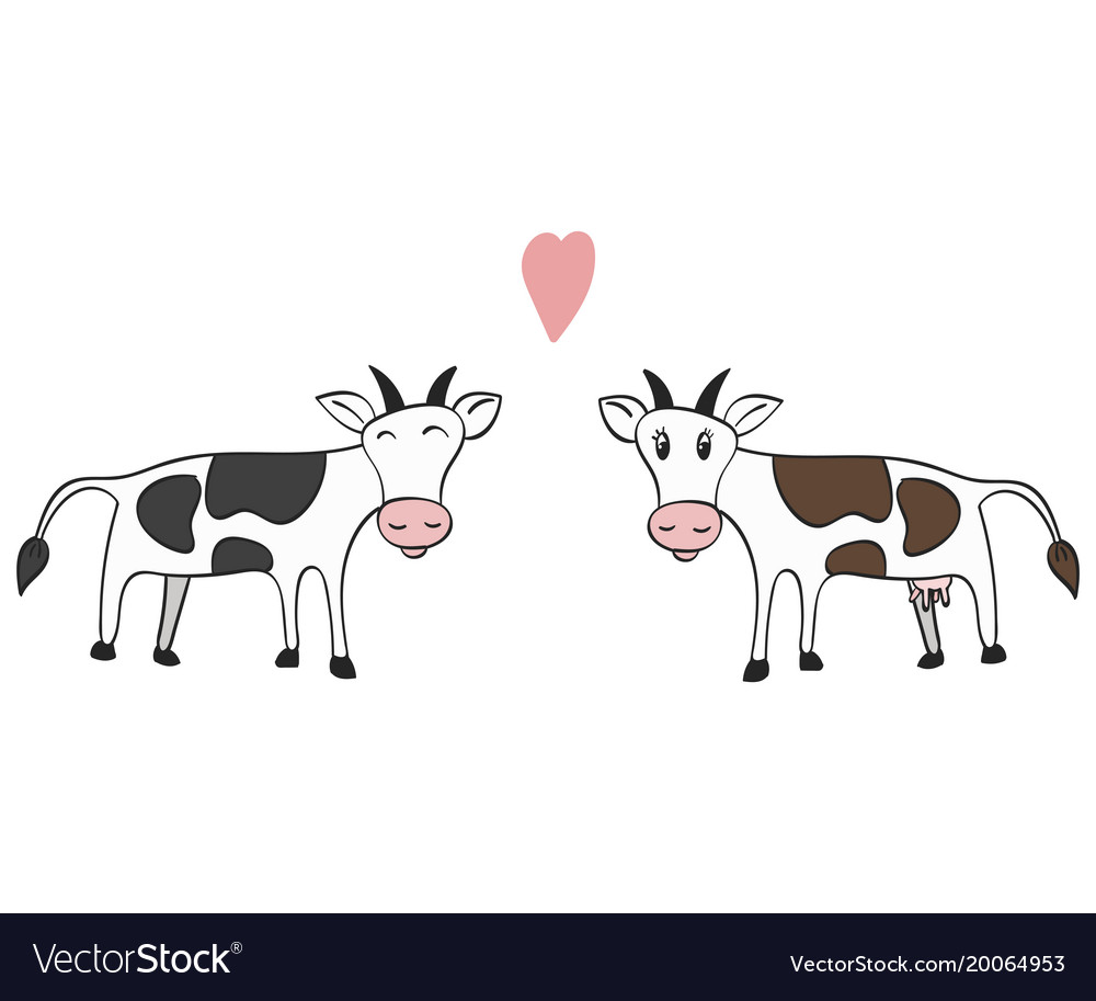 hand drawn a pair of cows royalty free vector image