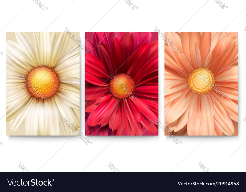 Set of covers with bud of flowers close-up trendy