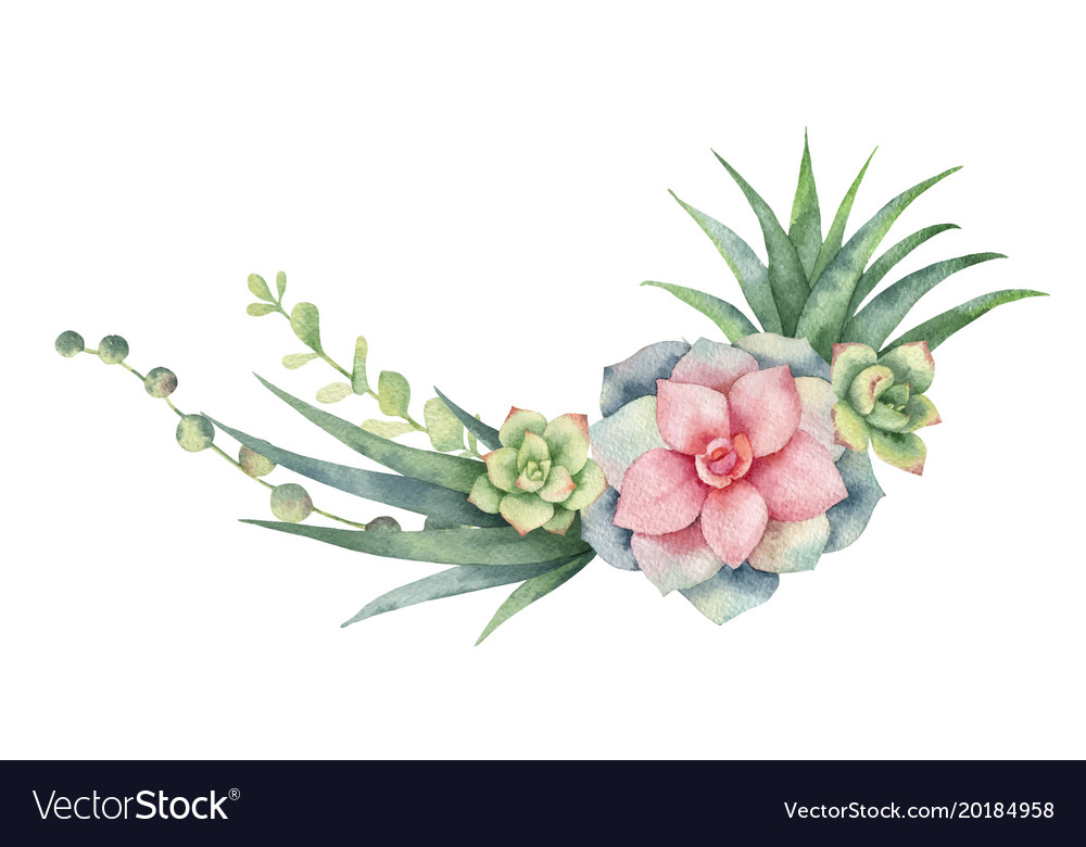 Watercolor wreath of cacti and succulent