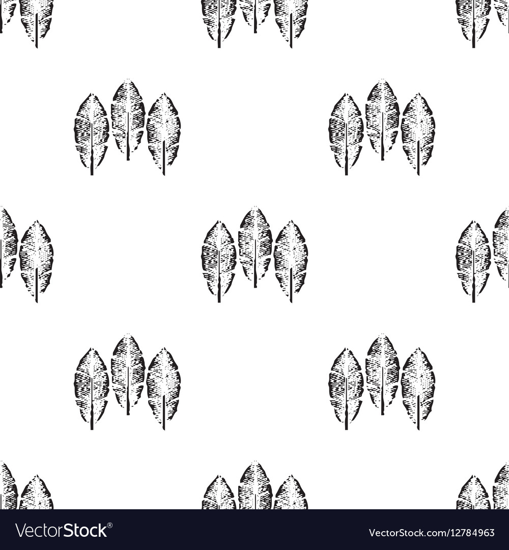 Tribal feathers on white background Feathers vector image