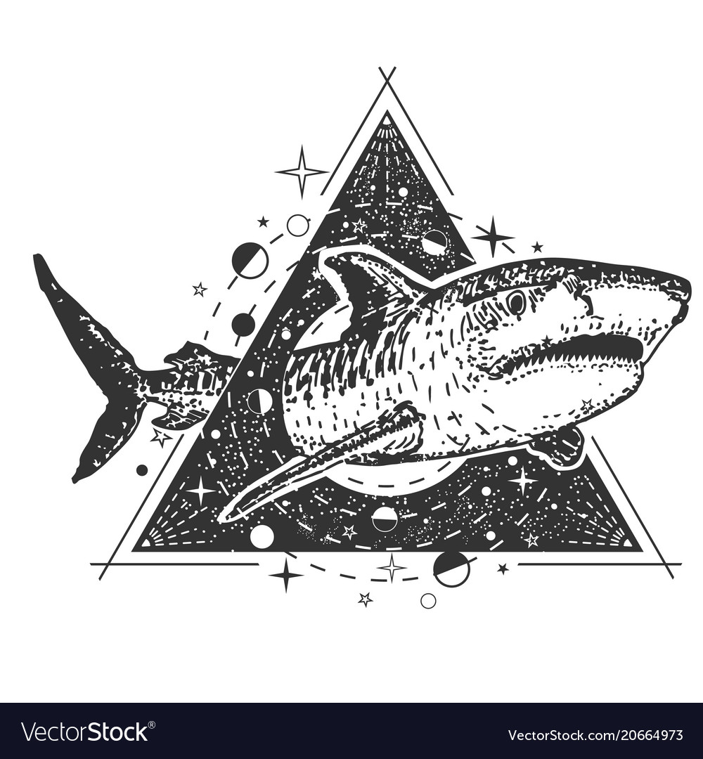 83f477b3fa5cd Sketch, Style & Shark Vector Images (41)