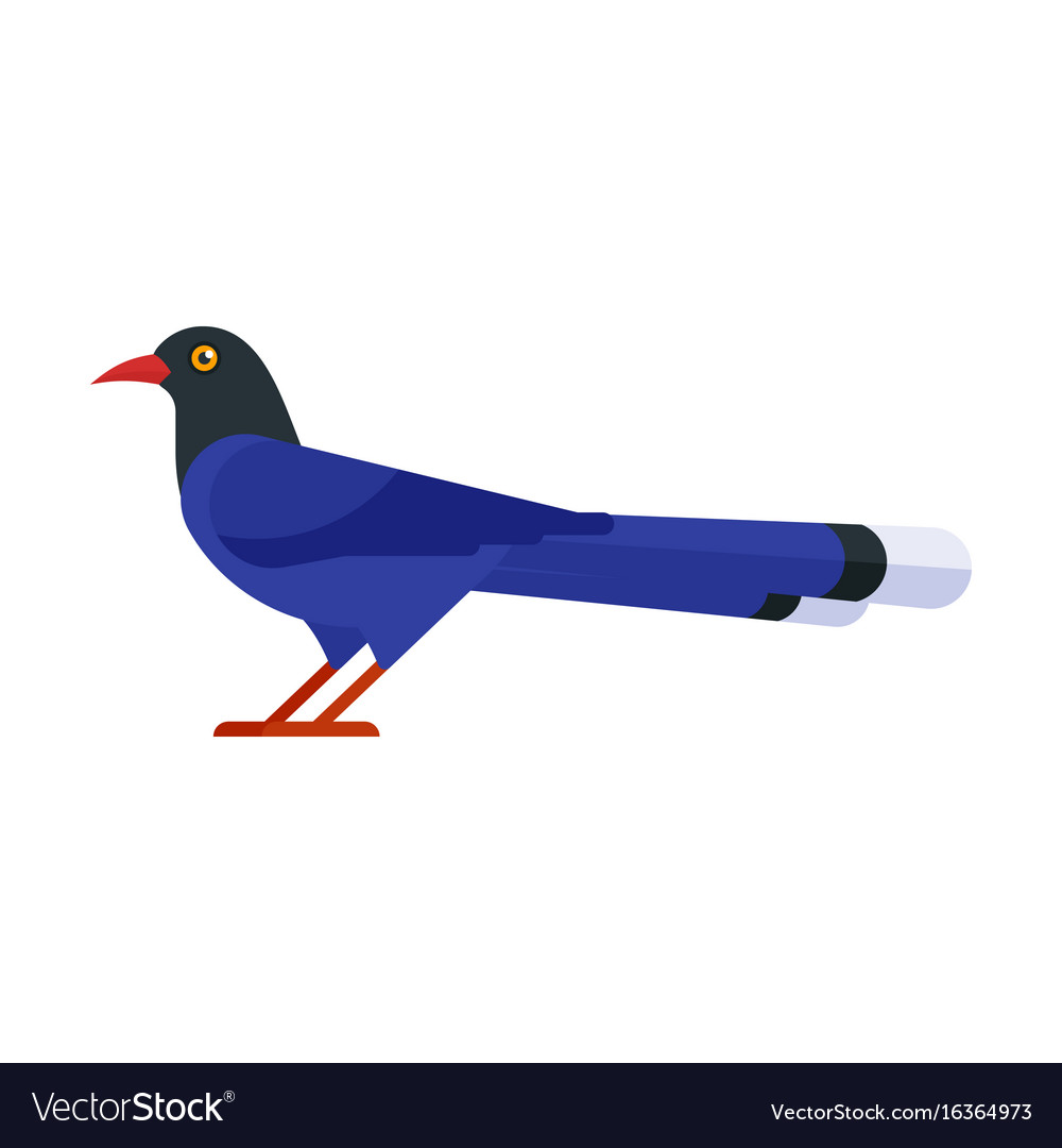 Taiwan blue magpie vector image