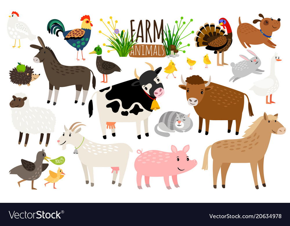 Farm animals domestic farm animal collection