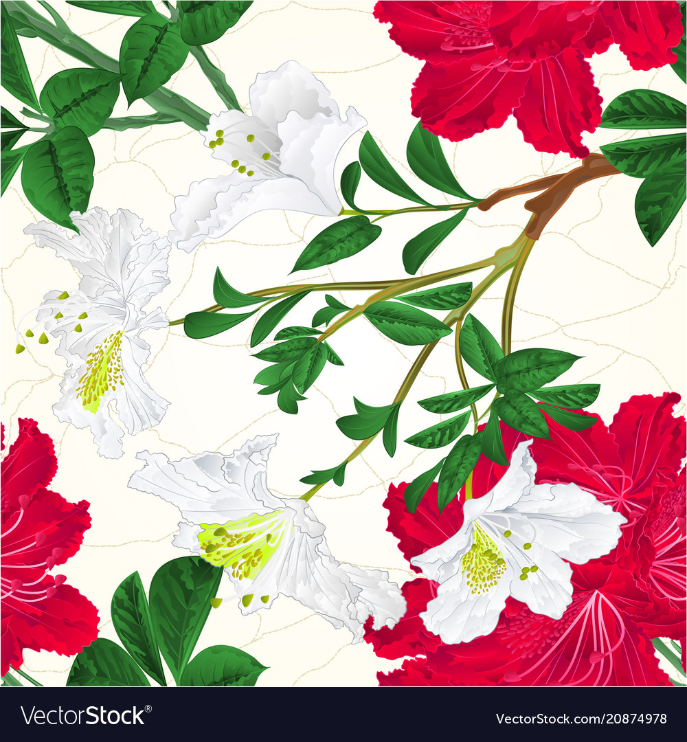 Seamless texture flowers white and red