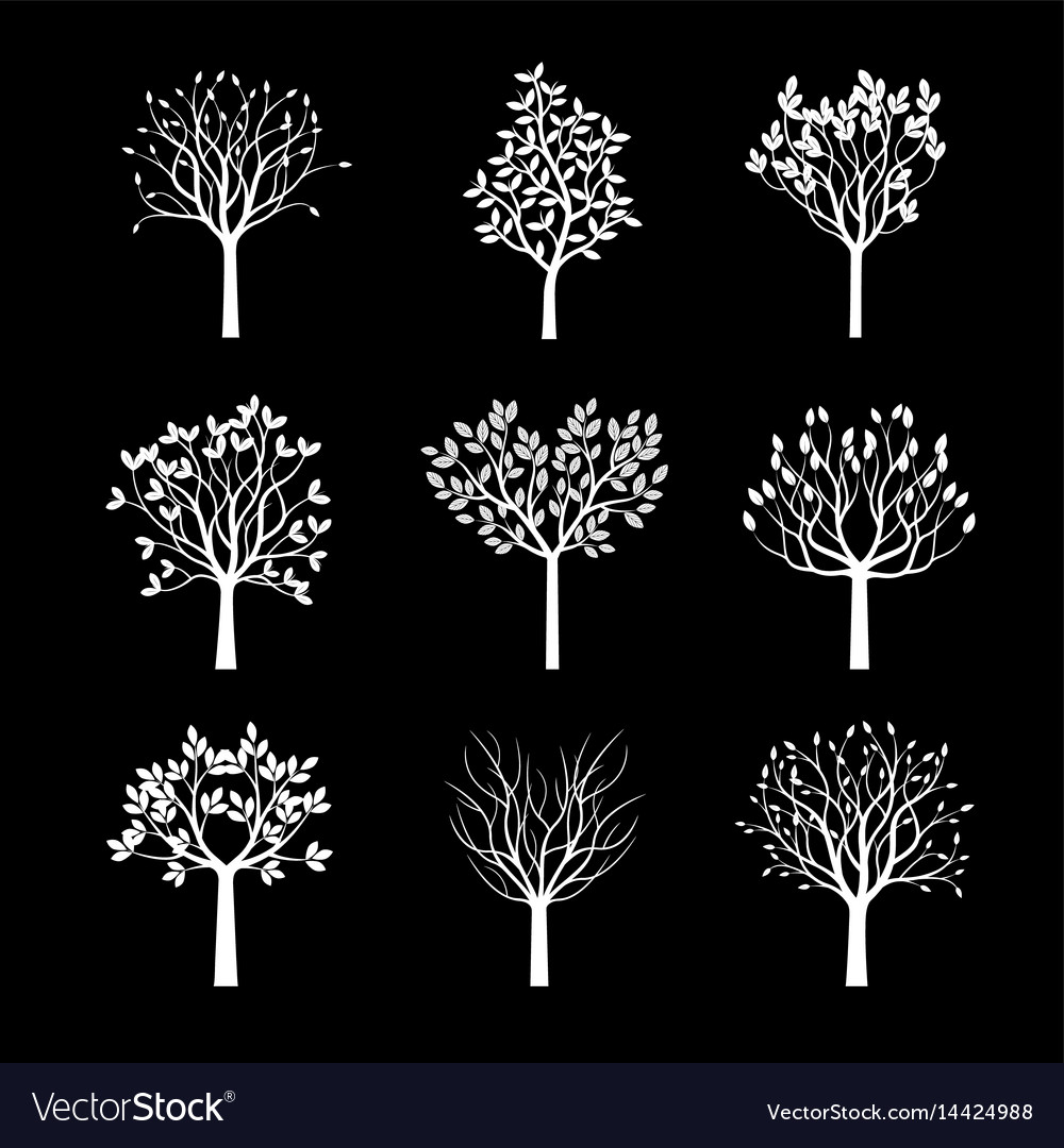 Collection of white trees vector image