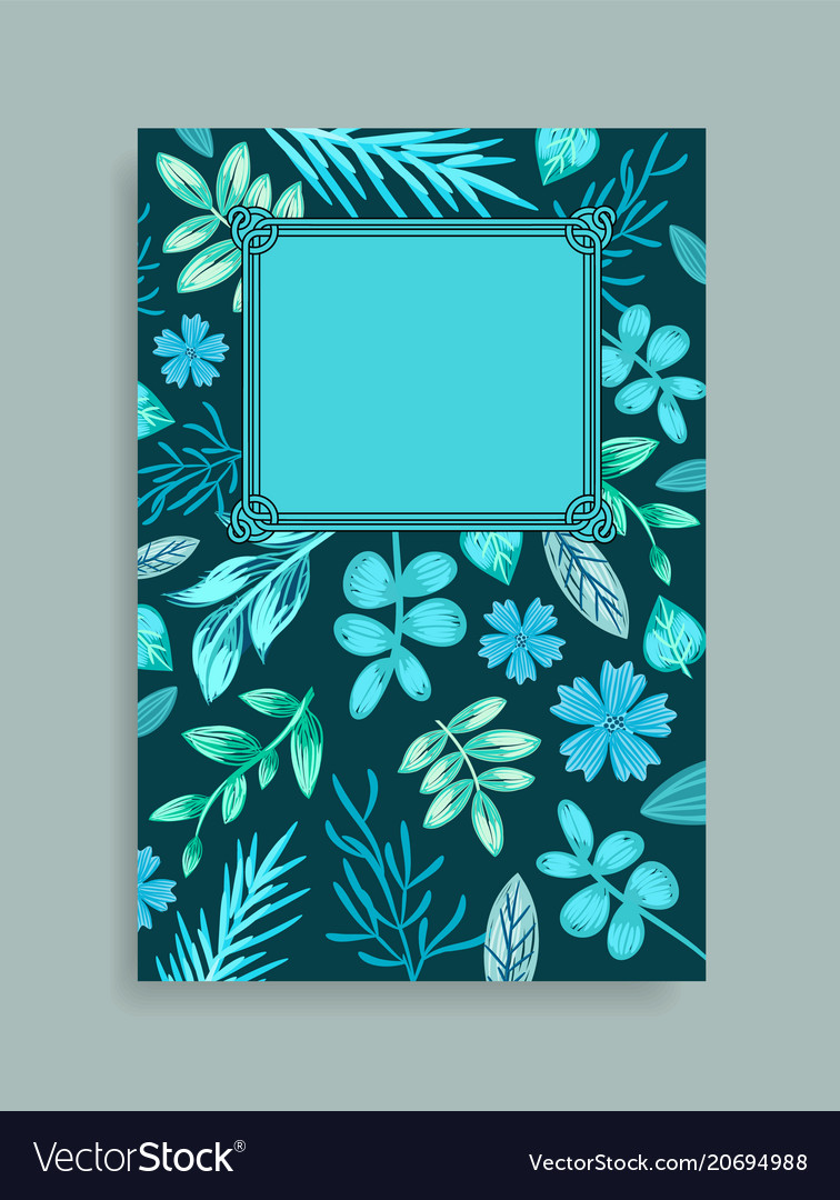 Colorful postcard with herbs vector image