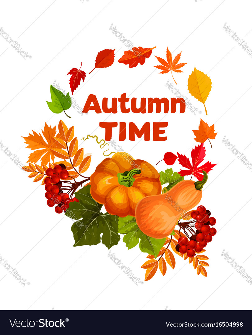 Autumn harvest pumpkin and leaf poster design