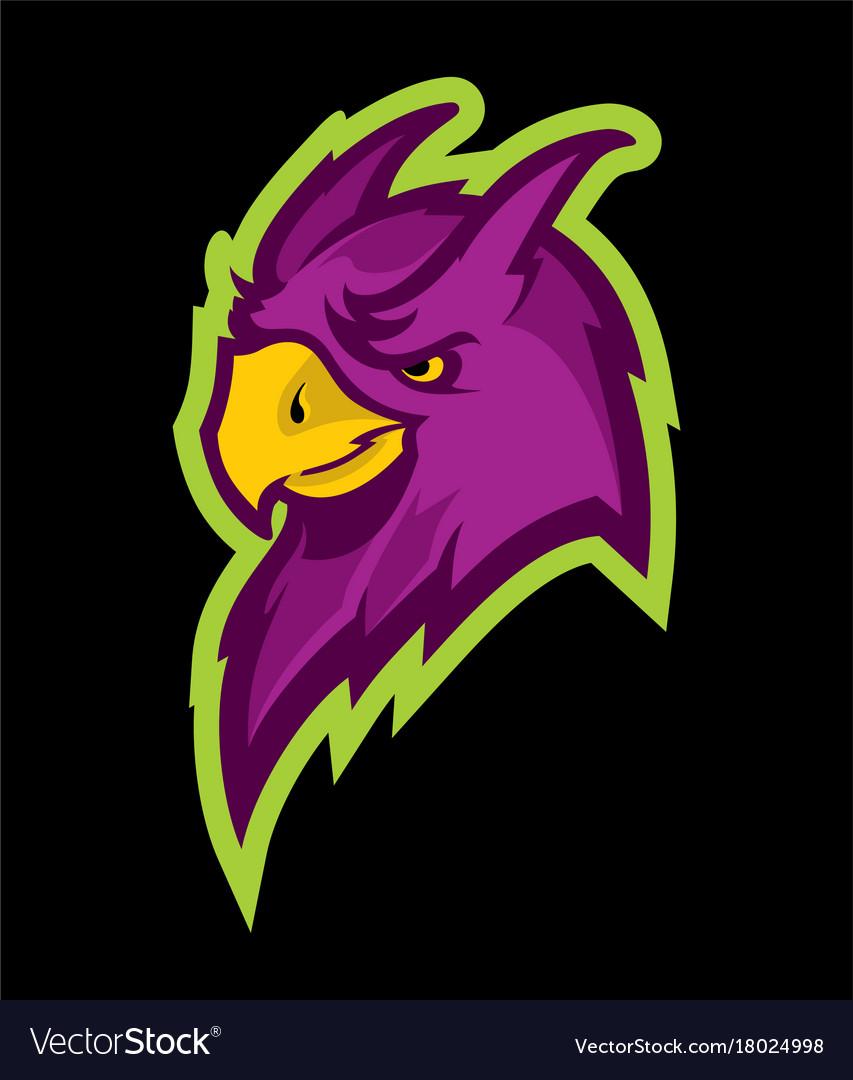Parrot head sport mascot