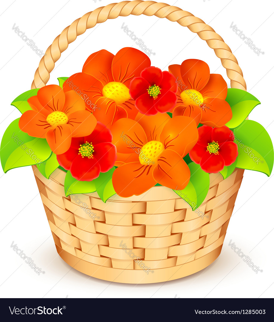 Basket with beautiful flowers royalty free vector image basket with beautiful flowers vector image izmirmasajfo