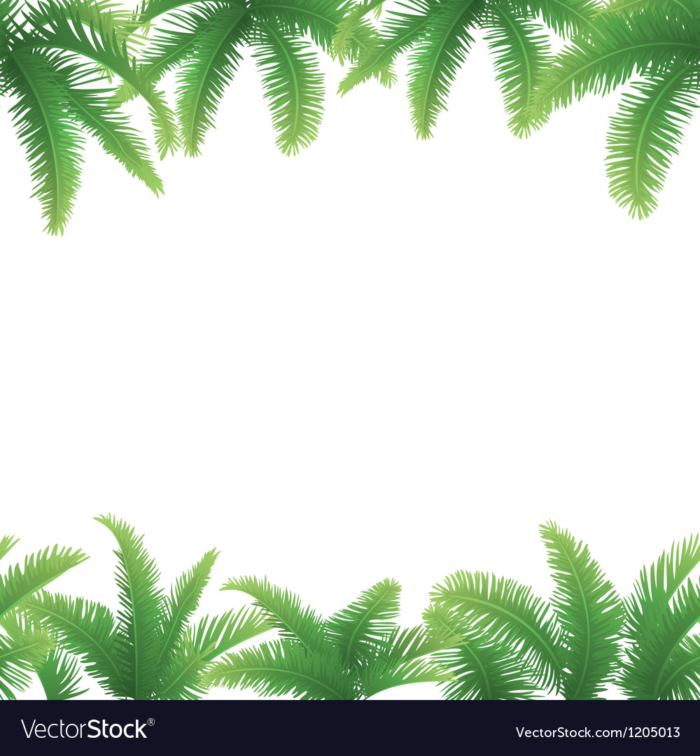 Seamless background palm leaves