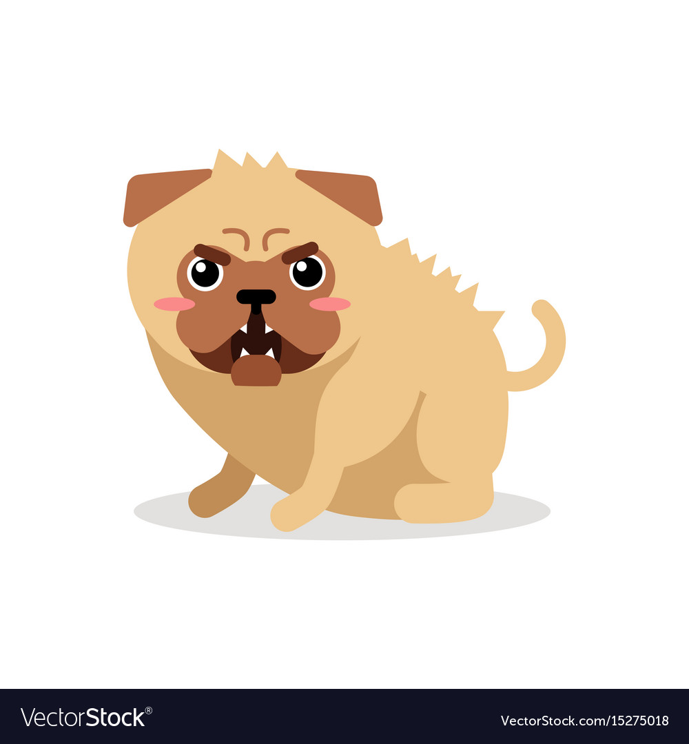 Cute cartoon angry pug dog character