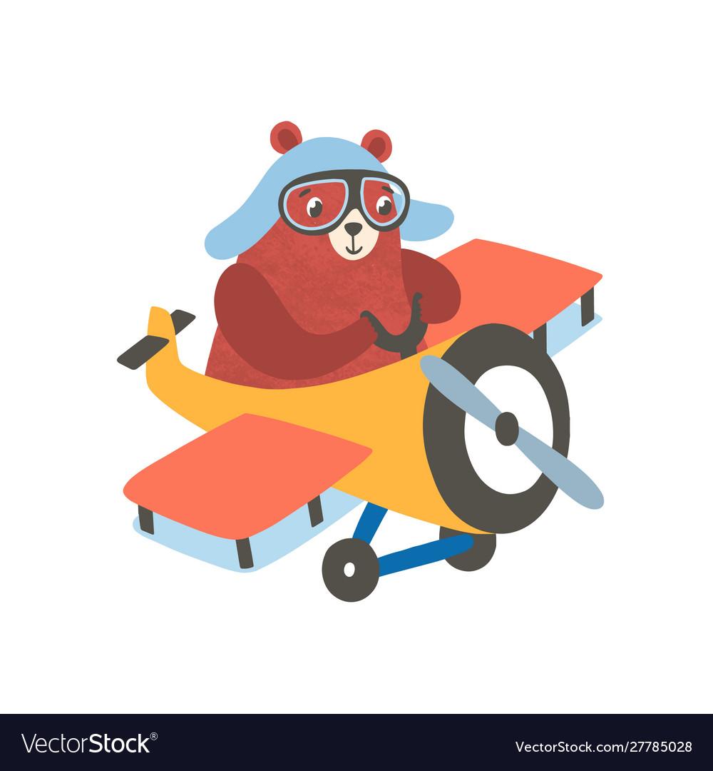 Little bear on airplane flat