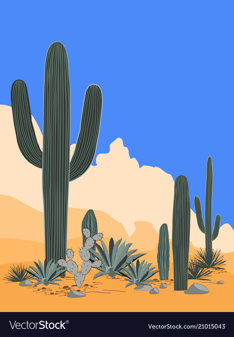 Mexico pattern with opuntia agave and saguaro
