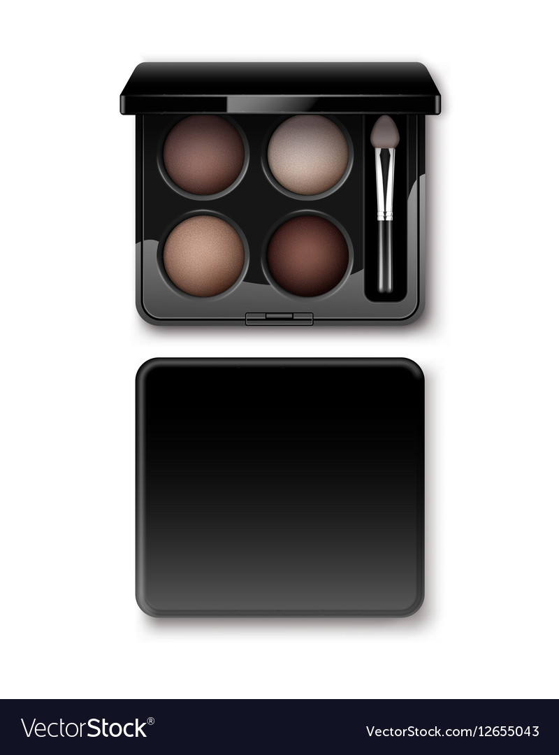 MultiColored Eye Shadows in Case with Makeup Brush vector image