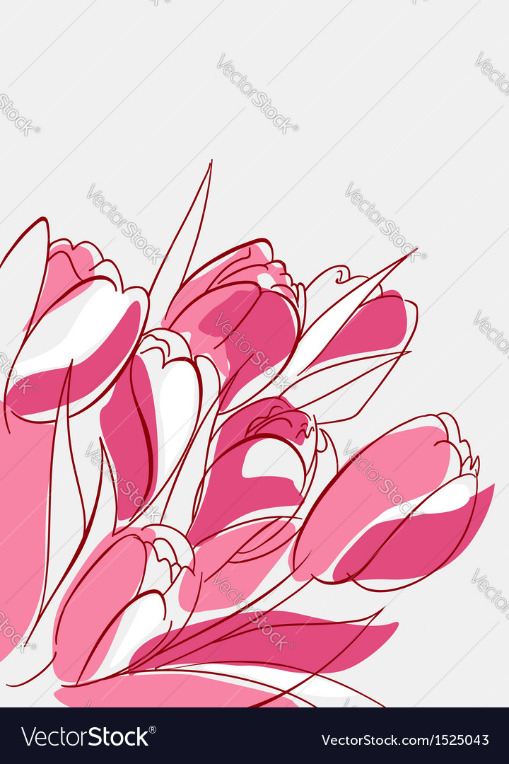 Pink and red tulips vector image