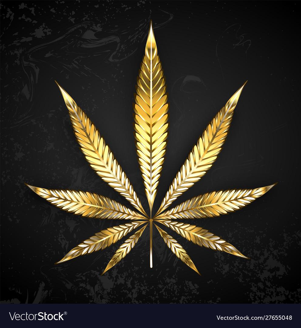 Gold leaf cannabis