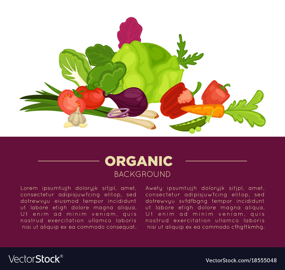 Organic food poster background of fresh vegetables