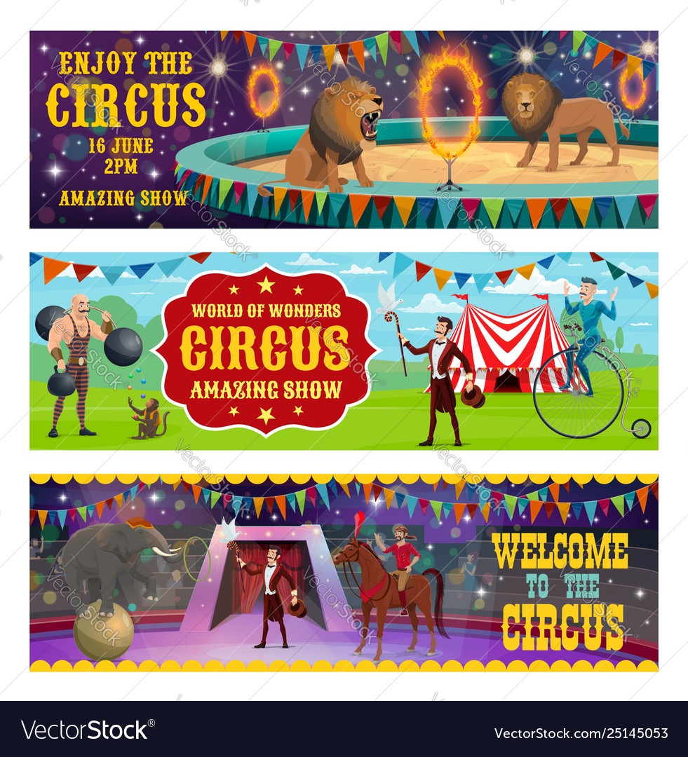 Circus animals show and performance