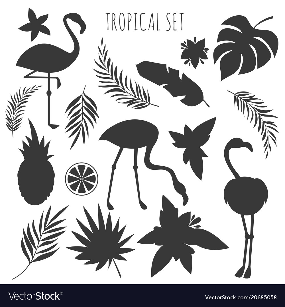 Grey tropical plants and flamingos silhouettes