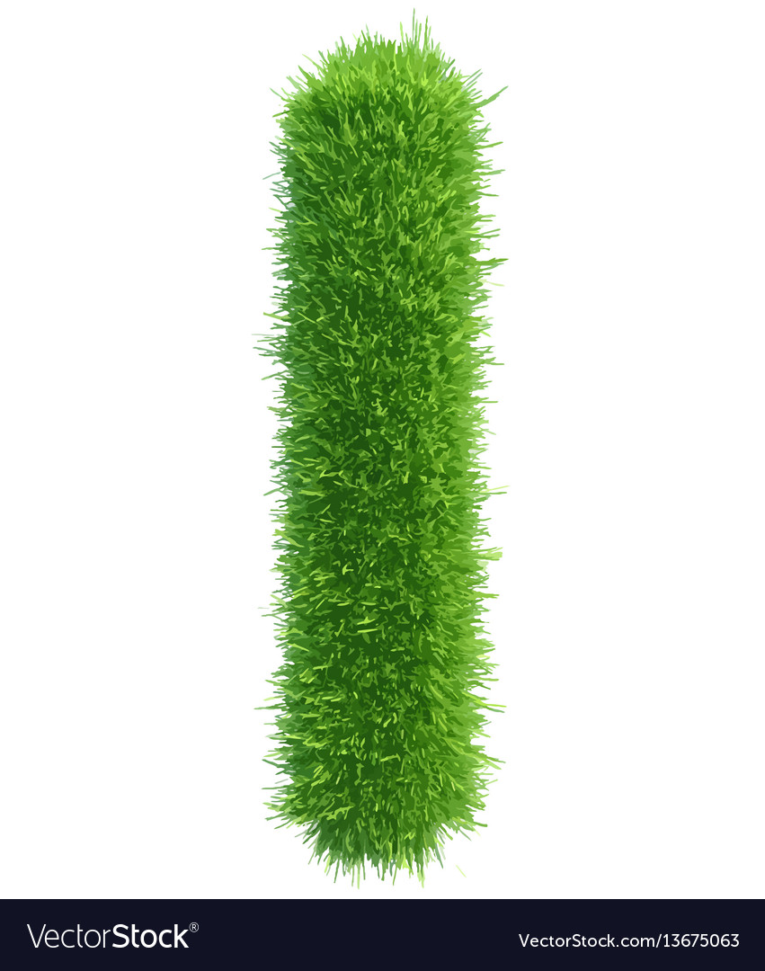 Capital letter i from grass on white vector image